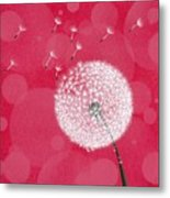 Dandelion Flying Metal Print