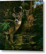 3 Deer Watching Metal Print
