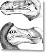 Dodo Bird, Hunted To Extinction Metal Print