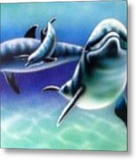 3 Dolphins Metal Print