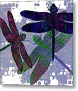 3 Dragonfly Metal Print