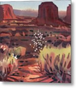 Evening In Monument Valley Metal Print