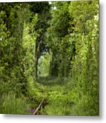 Famous Tunnel Of Love Location Metal Print