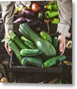 Farmer With Vegetables Metal Print