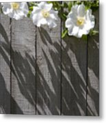 3 Flowers On The Fence Metal Print