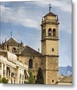 Granada Spain Metal Print