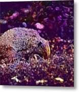Hedgehog Animal Spur Nature Garden  Metal Print