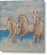 3 Horses Metal Print
