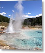 Imperial Geyser, Yellowstone Np Metal Print