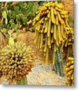 Kaktus Metal Print