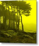 Lands' End Metal Print