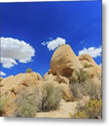 Landscape In Joshua Tree National Park Metal Print