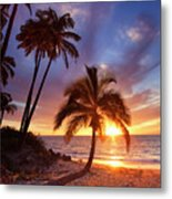Lonely Palm Metal Print