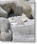 Mammoth Hot Springs Upper Terraces In Yellowstone National Park Metal Print