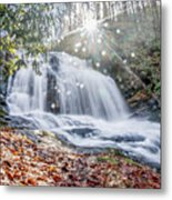 North Carolina - Dupont State Forest - Waterfall Collection Metal Print