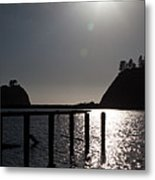 Olympic Peninsula Coast Metal Print