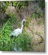 On The Bank Metal Print
