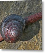 Oregon Snail Metal Print