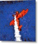 Painting Of Wingwalker Danielle Metal Print