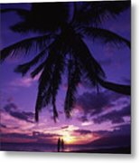 Palm Over The Beach Metal Print