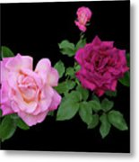 3 Pink Roses Cutout Metal Print