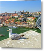 Porto Skyline Seagull Metal Print