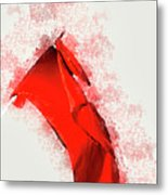 Red Flag On Black Background Metal Print