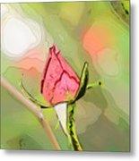 Red Garden Rose Bud Metal Print
