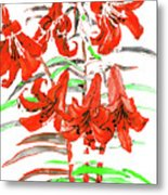 Red Lilies, Hand Drawn Painting Metal Print