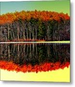 Reflections At Farrington Lake Metal Print