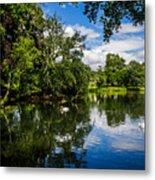 Roath Park Lake Metal Print
