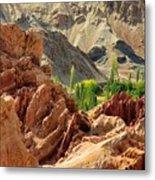 Ruins Basgo Monastery Leh Ladakh Jammu And Kashmir India Metal Print