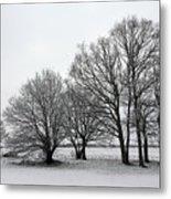 Snow On Epsom Downs Surrey Uk Metal Print