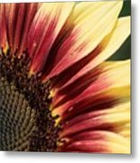 Sunflower Named Ruby Eclipse Metal Print