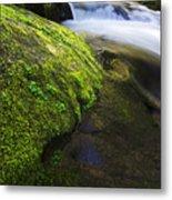 Sweet Creek Oregon 12 Metal Print