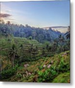 Tegalalang - Bali Metal Print
