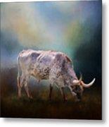 Texas Longhorn Steer Metal Print