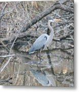 The Great Blue Heron Metal Print