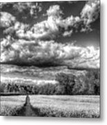 The Summers Day Farm Metal Print