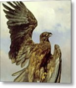 The Wounded Eagle Metal Print