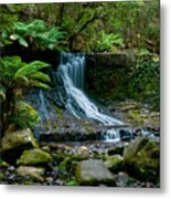 Waterfall In Deep Forest Metal Print