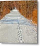 Winter On Macomb Orchard Trail Metal Print by LeeAnn McLaneGoetz McLaneGoetzStudioLLCcom