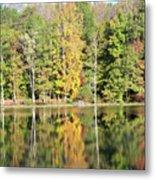 3007-fall Waterscape Metal Print
