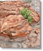 Colorful Sandstone In Valley Of Fire Metal Print