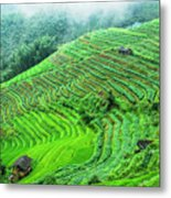 Mountain Scenery In The Mist Metal Print