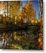 Cool Landscape Metal Print