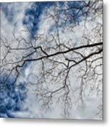 Trees Sky And Clouds Metal Print