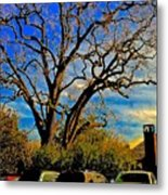 365 012716 Ancient Valley Oak And Parking Metal Print