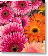 ,, Flowers ,, Metal Print