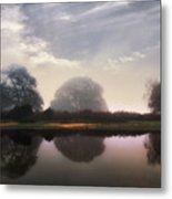 New Forest - England Metal Print